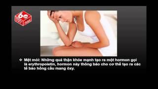 Download Triệu Chứng Cho Thấy Bạn Đã Mắc Bệnh Suy Thận Video