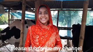 Download নিজে করি নিজে খাই বাড়তি আয় দ্বারা সংসার সাজাই দেখুন। Video