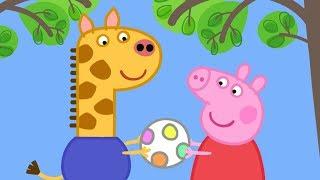 Download Peppa Wutz 🦒 Peppa trifft Gerald Giraffe! | Peppa Pig Deutsch Neue Folgen | Cartoons für Kinder Video