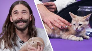 Download Jonathan Van Ness Plays With Kittens While Answering Fan Questions Video