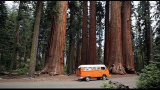 Download VW Camper Bus- restoration and roadtrip - Von Voyage Video