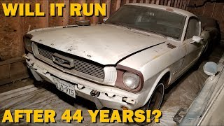 Download Forgotten 1965 Mustang First Start in 44 Years, Fastback Revival Part 1! Video