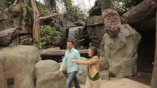 Download Visit Chattanooga Tennessee - Discover the Best Things to do in Chattanooga on a Three Day Trip Video