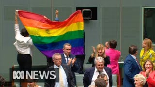Download The moment Parliament said yes to same-sex marriage Video
