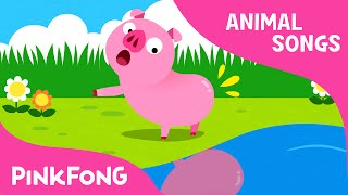 Download Did You Ever See My Tail?   Animal Songs   PINKFONG Songs for Children Video