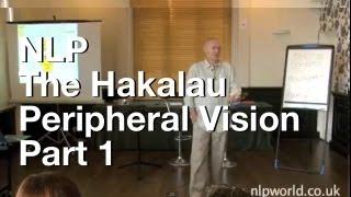 Download The Hakalau - Peripheral Vision Part 1 Video