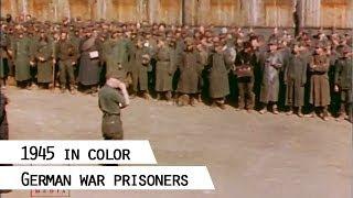 Download German war prisoners, 1945 (in color) Video
