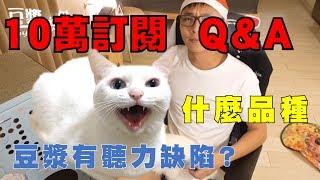 Download 【豆漿10萬訂閱TALK】十萬Q&A 豆漿其實有聽力缺陷? Video