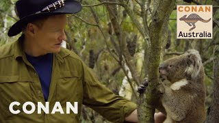 Download Conan Encounters Australian Wildlife - CONAN on TBS Video