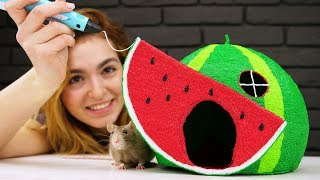 Download How to Draw Watermelon House with 3D PEN for Pet Rat Video