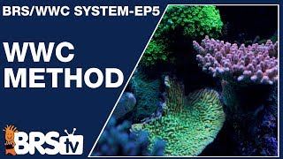 Download Ep5 - Ryan's take on the WWC method - The BRS/WWC System | BRStv Video