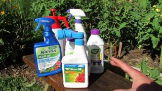 Download How Does Neem Oil Work, Insect Examples & Making Your Own Neem Oil Spray: Save Money! - TRG 2014 Video