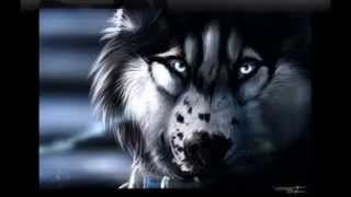 Anime Horror (Wolves)- Whispers in the Dark Free Download Video MP4