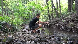 Download Fishing a TINY Urban Creek For Whatever Bites Video