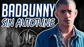 Download VOZ REAL BAD BUNNY SIN AUTO-TUNE | NB Video
