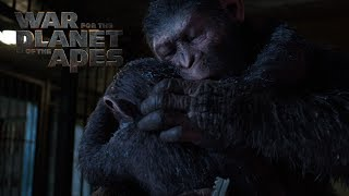 Download War for the Planet of the Apes | A Hero Becomes Legend | 20th Century FOX Video