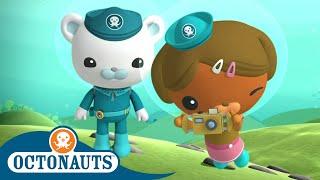 Download Octonauts - Dashi the Photographer | Cartoons for Kids | Underwater Sea Education Video