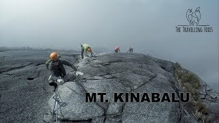 Download ONE OF THE HARDEST HIKES I'VE DONE! (Mt. Kinabalu via Ferrata, Sabah, Malaysia) Video