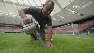 Download Getting the best of artificial turf Video