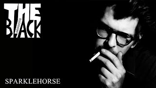 Download Sparklehorse - Black Session [25-09-2006] Video