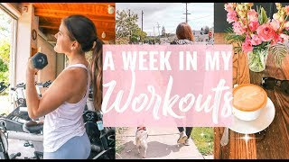 Download MY HEALTHY & FIT LIFE! A Week In My Workouts! Video