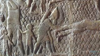 Download ¡Top 10 Horroríficos Métodos Medievales de Tortura! Video