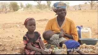 Download Survival strategies in the Sahel Video