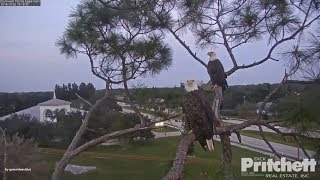 Download SWFL Eagles. ~ Rainbow For Two; Hurry Up Harriet! Video