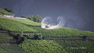 Download Air Glacier Sulfatage des vignes Valais Video