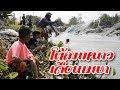Download ลงปลา หว่านแห‼️บัตร 100 บ้านยาง เซียนปลามาโต้ลมหนาวเดือนเมษา Cast Net Fishing Video