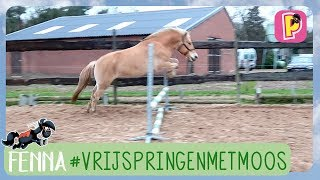 Download Vrijspringen met Moos | Fenna | PennyTV Video