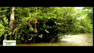 Download Guyane - Echappées belles Video