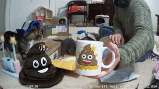 Download Mailbag & Unboxing, 2017-02-11 ″SO MUCH POOP″ Video