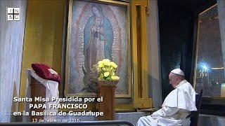 Download Santa Misa Presidida por el PAPA FRANCISCO en la Basílica de Guadalupe, 13 de febrero 2016 Video