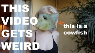 Download HOW ARE COWFISH REAL? (My Strangest Pet) Video