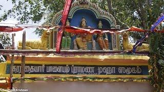 Download Kallidaikurichi Thenkulathur Ayyan Sasthapreethi 2015 Traditional Sastha Paatu Video