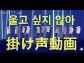 Download SEVENTEEN(세븐틴) Don't wanna cry (울고 싶지 않아) 掛け声 動画 Video
