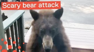 Download Mama Bear Charges Cabin with Frightened Family Inside Video