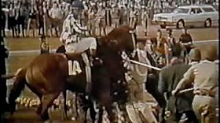 Download SECRETARIAT - 1973 Kentucky Derby - Part 4 (CBS) Video