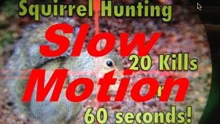 Download Slow Motion Squirrel Hunting sequel to 20 Kills in 60 Seconds Video