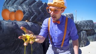 Download Learn Verbs with Blippi | Educational Digger Videos for Kids Video