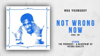 Download NBA YoungBoy - Not Wrong Now (Ethika - The Prophesy) Video