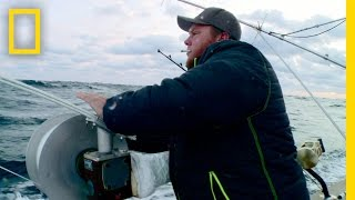 Download First Fish of the Morning | Wicked Tuna: Outer Banks Video