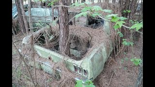 Download Barn Finds - 56 Classic Mustangs Discovered in Woods in Louisiana Video