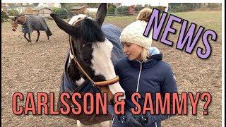 Download WAS GIBT´S NEUES? Nur noch 3 Pferde | Equitana | ... Video