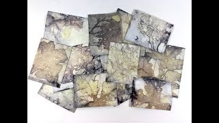 Download How To Make Eco Prints or Boiled Book Pages Video