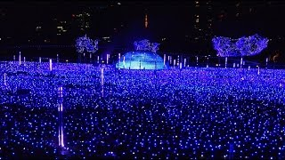 Download Tokyo Midtown christmas illumination 2016 4K Video