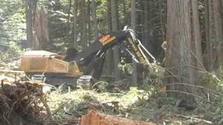 Download Tigercat LX870C feller buncher Video