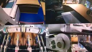 Download Gopfert Evolution 6 Colour High Quality Video