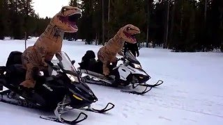 Download T-Rex Dinosaurs Racing Snowmobiles in Inflatable Costumes Video